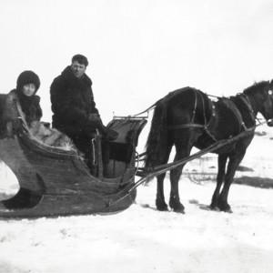 Une promenade en carriole dans la neige