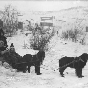 Trois enfants dans un traîneau à chiens