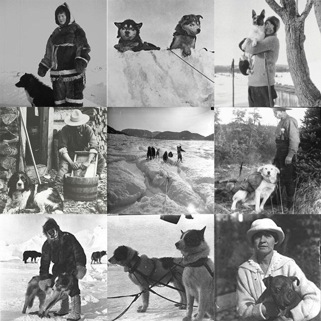 L'année du chien