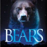 Bears :: Bears