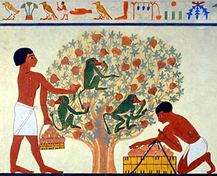 the center of egyptian life Religion was a the center of egyptian life egyptians believed in many gods, so they were polytheistic the egyptian king was the absolute ruler, and owner of all the land, water, people.