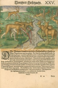 Chasse aux cerfs de Virginie, 1591, par Theodor de Bry