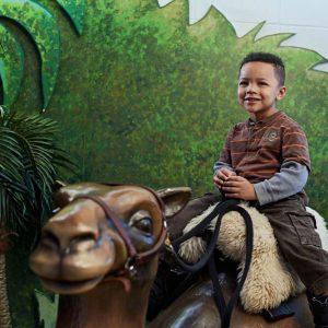 Voyagez à dos de chameau.